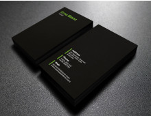 Ema-Blanc Business Card DIY Template MSWord